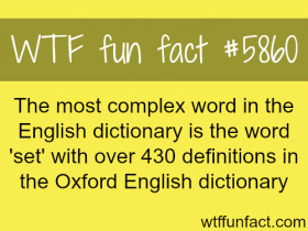 fun fact - the word set