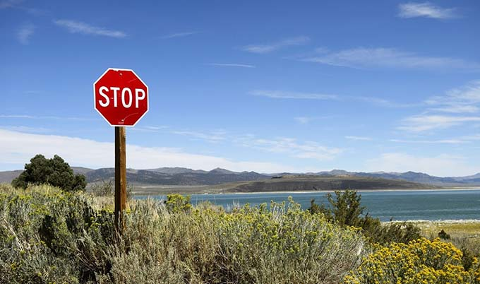 Lonely stop sign